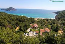 Hotels & Rooms in Thassos!