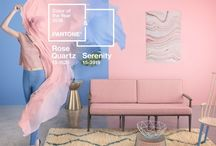 PANTONE || Serenity and Rose Quartz / Pantone Colour of the Year 2016 / by Amara
