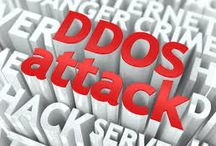 The anti ddos software