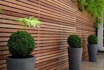 fence, hedge