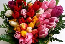 Cadouri Florale Primavara / www.cadouri-florale.com | www.facebook.com/CadouriFlorale, cadouri.florale@gmail.com