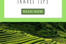 Asia Travel / Travel Tips and Inspiration to help you create your perfect adventure to Asia. Follow for destinations, activities, places to eat, and travel hacks for your trip to Asia.