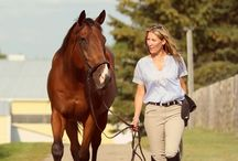 OTTB Success Stories / Success stories of Off-Track Thoroughbreds in second careers