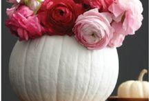 Hello Fall ☕️