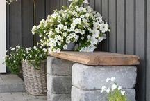 Pots and Plants inspiration