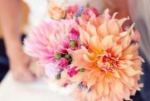 Flowers Bouquets / by Suzette Lee