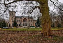 Modrze - Pałac / Pałac w Modrzu został zbudowany w 1888 roku dla rodziny Baarthów. Kolejnym właścicielem był Marcin Biederman, a w okresie międzywojennym Józef Hutten-Czapski. Po II wojnie światowej w pałacu mieściły się biura Spółdzielni Rolniczej. Obecnie budowla znajduje się w prywatnych rękach i jest remontowana.