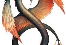DSA - Drachen