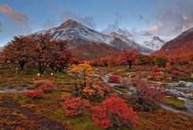 Best Places in the World / Raccolta di immagini dai posti più belli del mondo. Le immagini sono prese sul Web.