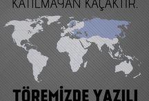 Göktür türk