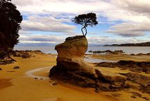 Национальный парк Абель Тасман