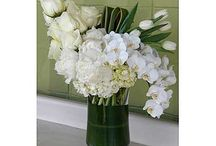 White Florals Collection / A variety of floral arrangements in white