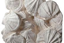 Δίθυρα απολιθωμένα