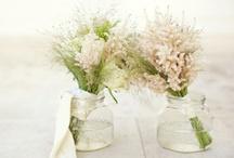 Flowers and green life / by Rhya Tamašauskas