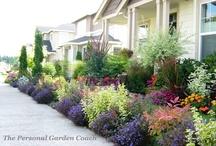 Summer gardening/landscaping / by Brooke Dmytriw