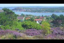 L'arcipelago di Goteborg