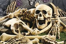 Skull stuffs