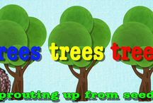 Stromy a kriky