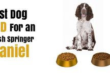 Best Dog Food / What is the best dog food for your breed dog? Find dog food reviews and read up on what's good for your dog and foods for you need to avoid for your pooch.