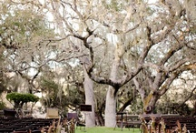 Wedding Venues / I gotta say these are the best wedding venues ever.....OMG this is too beautiful....