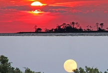 Outer Banks Sunsets / A collection of some our favorite Outer Banks sunset photos. / by Resort Realty Outer Banks
