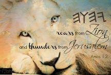 Lion of Judah - Hebrew-Israel