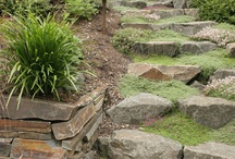 Landscaping / by Robi Akers