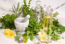 Gyógynövény receptek