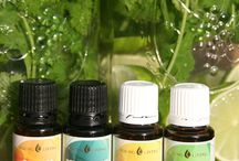 Ooooh! Oils! / All about essential oils