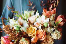 Květiny / Kytice, rostliny