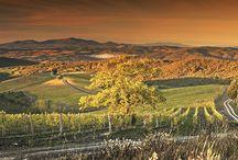 Toscana - Castiglion del Bosco / De todas as regiões da Itália, a Toscana é sua obra-prima. Em meio a colinas e vinhedos dos mais antigos do mundo, a região é também a mais rica em obras de arte em todo o planeta. Um mundo para perder-se em degustações de vinho Chianti, para provar sua típica culinária e, mais que tudo, para visitar seus pequenos vilarejos incrustados nos topos dos montes.