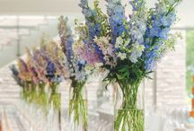 Flowers - Blue (Flori - Albastru)