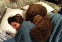 Teddy bear / teddy bear