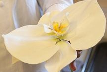 TUTORIAL flowers