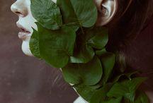 Geri - Plants