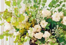 flowers / by Britt @ Gus + Lula