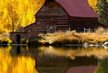 Old Barn's / by Marilyn Houser
