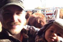 Felfies Beef  / Farmer + Selfie and a Farm Animal