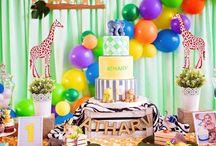 Safari Temalı Parti Fikirleri - Safari Themed Party Ideas
