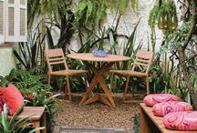 jardinagem / plantas