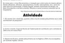 Dengue zika