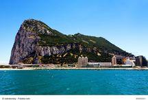 Monkeying around Gibraltar