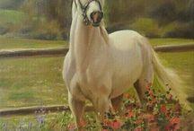 Doğada at