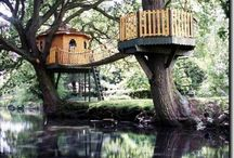 A Treehouse and an income producing dream / Dreaming about buying a redwood filled plot of land, building a treehouse and a cottage to retreat to and rent for some extra income. / by Muse