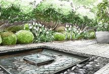 Garden drawings and sketches