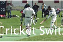 Cricket Switzerland / News about cricket in Switzerland