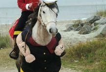 Costumi per Cavalli