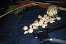 storing garlic/onions/scallions/shallots