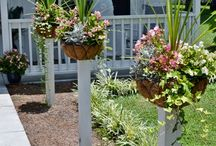 Garden / by Poteau Pets