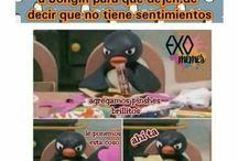 •EXO•